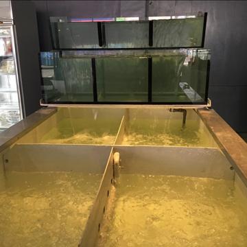 水產缸_2